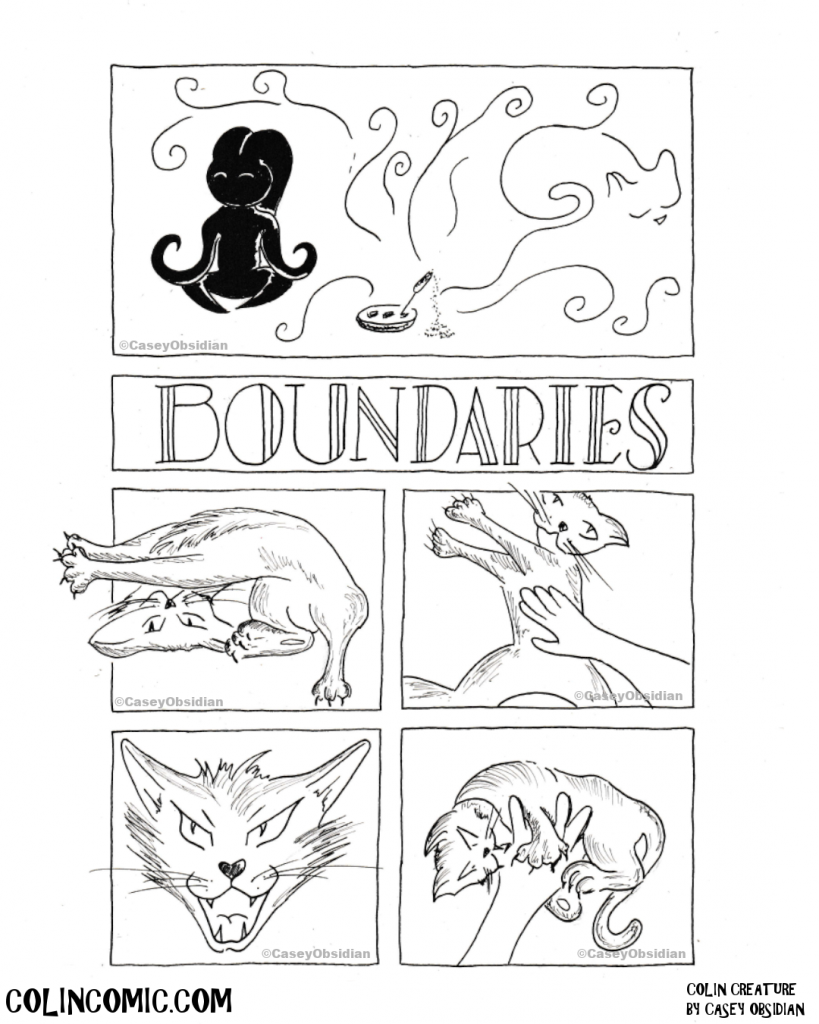 031. Want to know how to set a boundary? Ask a cat.